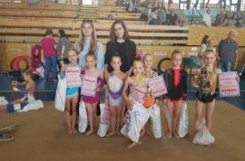 Milevský pohárek 5. 5. 2018